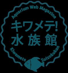 copy-kiwame1 (1).png